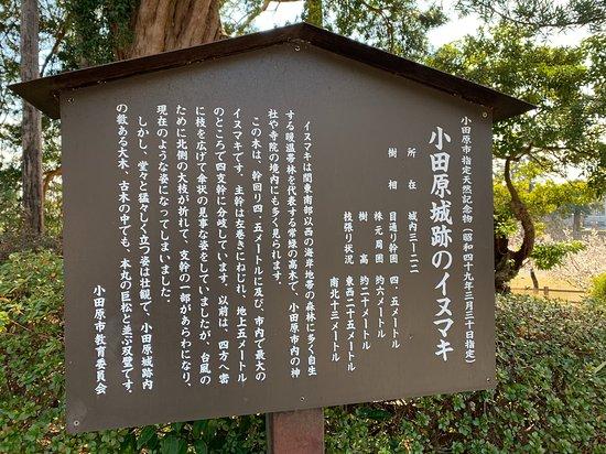 Odawara Castle Ruins Inumaki