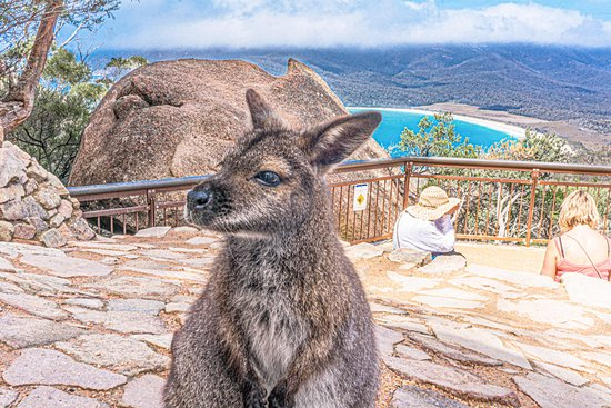 Wineglass Bay & Freycinet NP Full Day Tour from Hobart via Historic Richmond