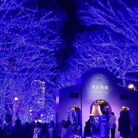 Tokyo, Japan: 換上聖誕裝的晴空塔,出色的楓景,超靚!