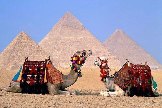 Van Hurghada Dagtocht naar Cairo