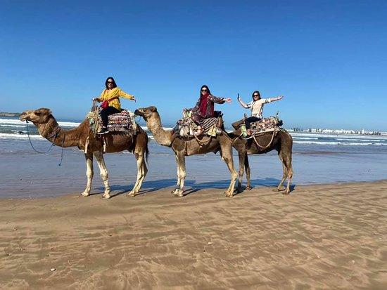 Our fun camel ride in Essaouira