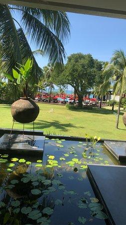 Utsikten från receptionen ner mot poolen och havet.