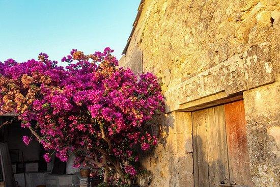Sabor de Sicilia en nuestra granja