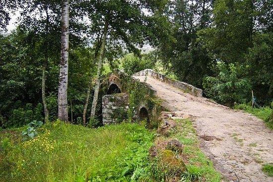 El Camino Portugues: de Tui à Saint Jacques de Compostelle 8 jours et...