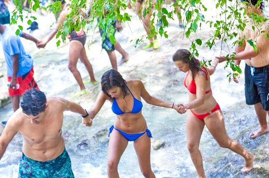 Dunns River Falls and Park Private Tour