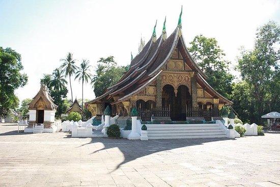 Visite privée des temples à pied...