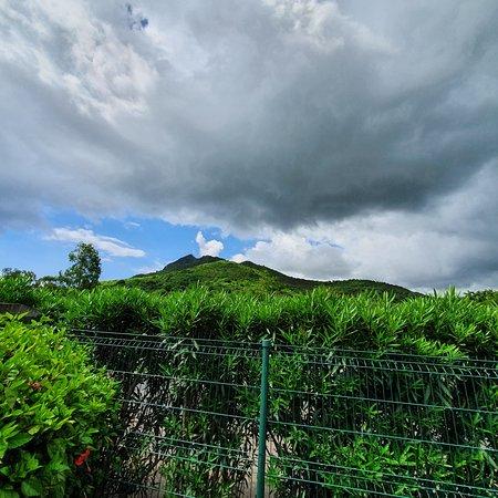 Riviere Noire District: Mountains