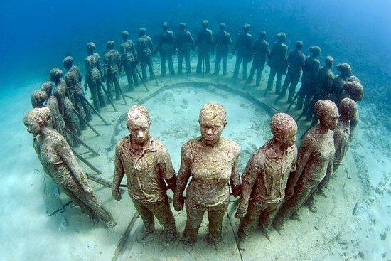 2 Hour Sculpture Park Snorkel