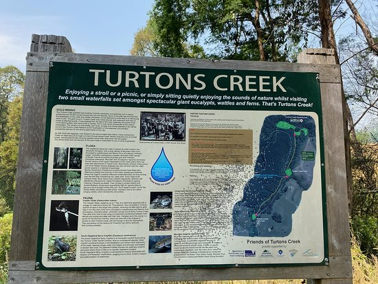 Turton Creek reserve
