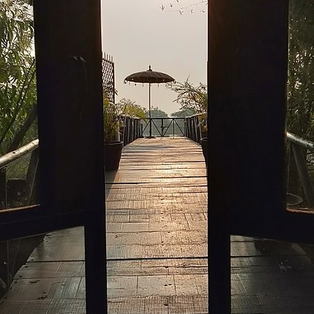 Some pics from Bamboo Forest Safari Lodge.