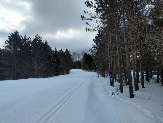Frederic, MI: One of the many groomed trails.