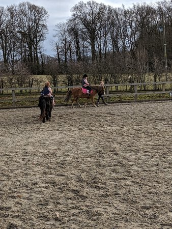 Wittersham, UK: Our girls very first pony riding lesson, dreams came true!