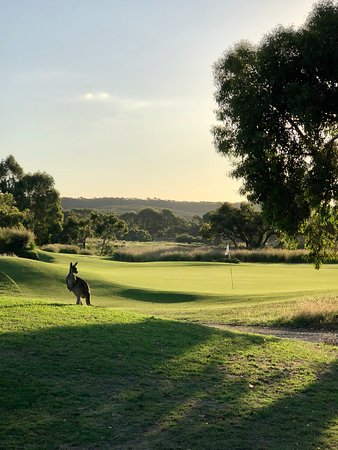 Great golf course