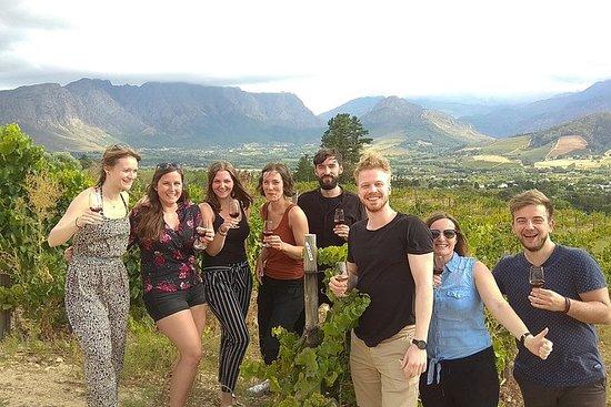 Wine Tour Stellenbosch & Franschhoek...
