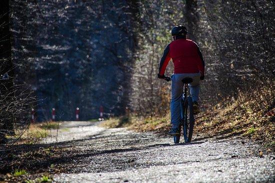 布拉索夫骑自行车游览 -  3小时