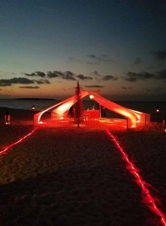 Per chi vuole cena sulla spiaggia in una tenda installata ad hoc... a pagamento