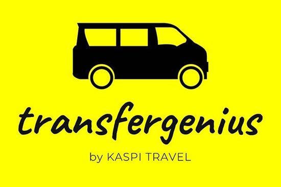 The Transfergenius