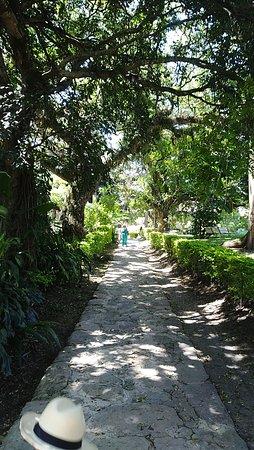 REcorrido hacia la casona del Club del Bosque en Silvania Cundinamarca, un paraiso natural.