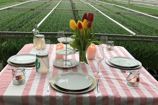 Have lunch among the tulips