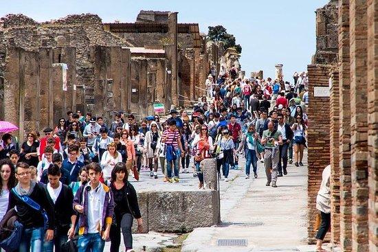 Pompeii, Herculaneum and Vesuvius...