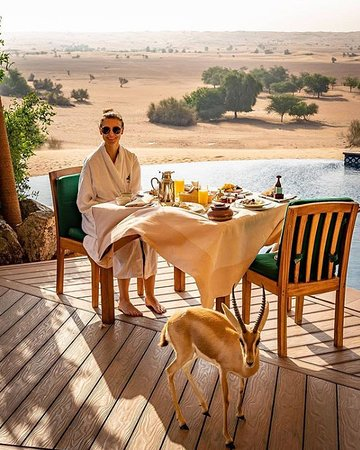 Murqquab, Emiratos Árabes Unidos: The only thing better than breakfast in bed is breakfast by your private pool in the middle of a desert conservation reserve 😍 Expect to be accompanied by a gazelle, deer or oryx! 📸 @mister_snuffleupagus via IG