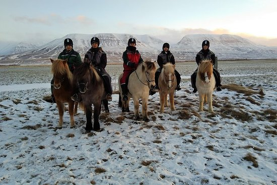 Horse Riding in Winter - The Viking...