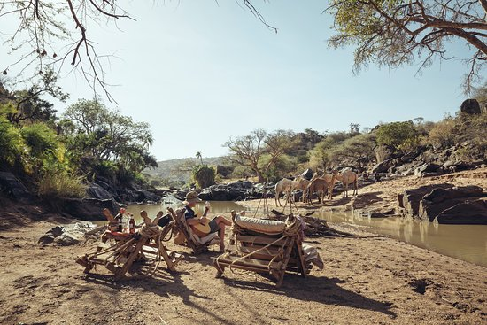 Nomad Mobile Safaris