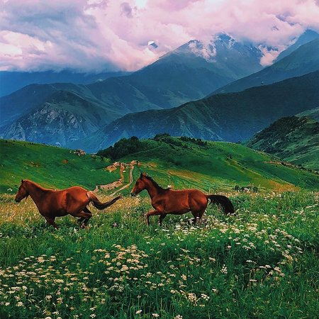 Republic of North Ossetia-Alania, รัสเซีย: The beautiful highlands of North Ossetia-Alania 😍💙 . 📷:@mikhoshka . FOLLOW👉@mustdotravels FOLLOW👉@mustdotravels FOLLOW👉@mustdotravels .  ____________________________________ 🔛TURN POST NOTIFICATIONS ON .