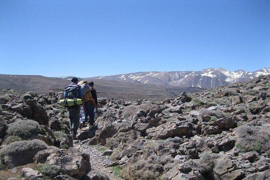 Berber Trails