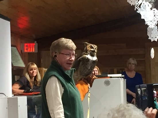 Canastota, NY: Owl education at Great Swamp Conservancy.  Live owls were beautiful to see!