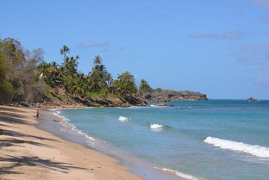 Tour de l'île de Tobago