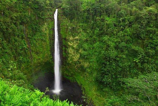 Kona Shore Excursion: Lava Tubes, Waterfalls & Parker Ranch