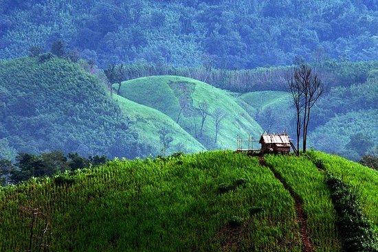 Excursion privée Pyin Oo Lwin d'une...