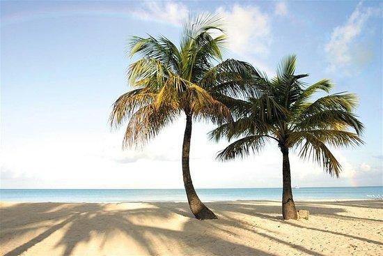 La vie est un crawl de plage!