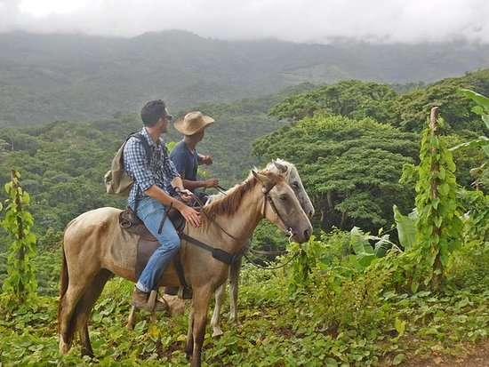 Horseback riding in the mountains of...
