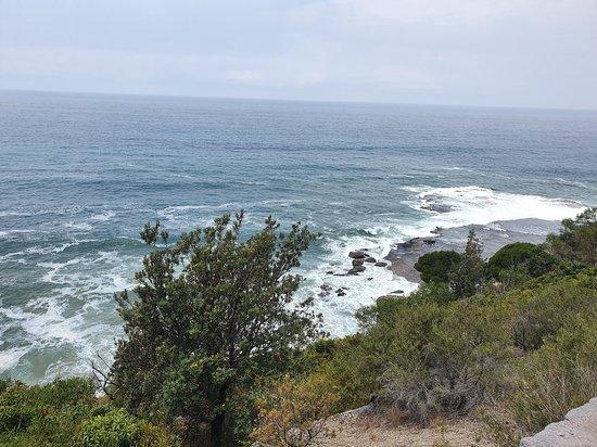 Coalcliff, Австралия: Sea Cliff