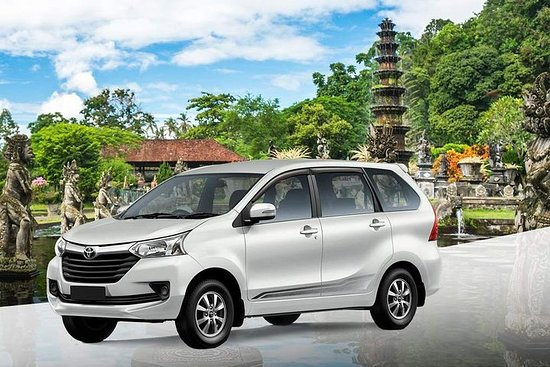 Bali Private Car and Customize Tour...