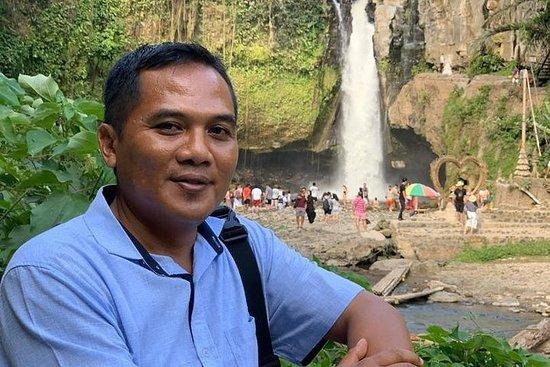 Melhor destino de Bali - ubud, excursão...