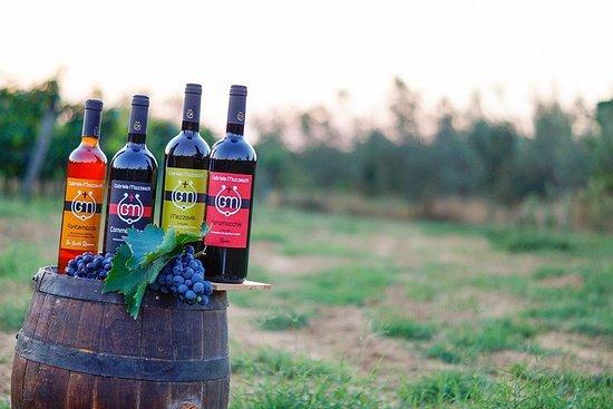 Vin og olje smaksopplevelse