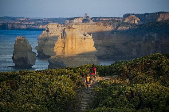 Great Ocean Road Walk & 12 Apostles Private Luxury Tour - 3 dager