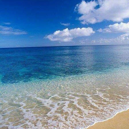 写真カリブ諸島枚
