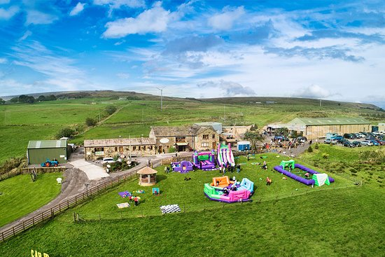 Edgworth, UK: Everyone has fun at the wellbeing farm!