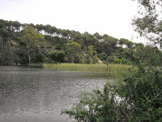 Lago de Las Tortugas