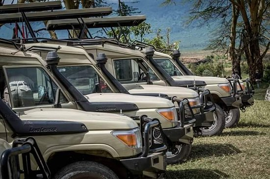 Riara Ridge, Kenya: ready