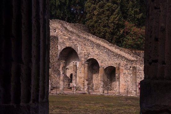Rovine di Pompei e visita privata al