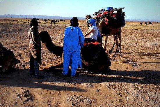 Morocco Travel Safe