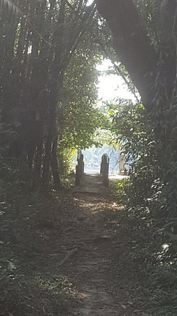 Kenema, เซียร์ราลีโอน: The path from the jetty to the camp. An enticing first glimpse