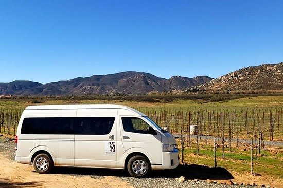 Baja Wine & Sun Tours