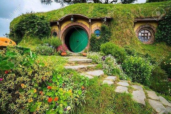 Hobbiton movie set and Waitomo glowworm...