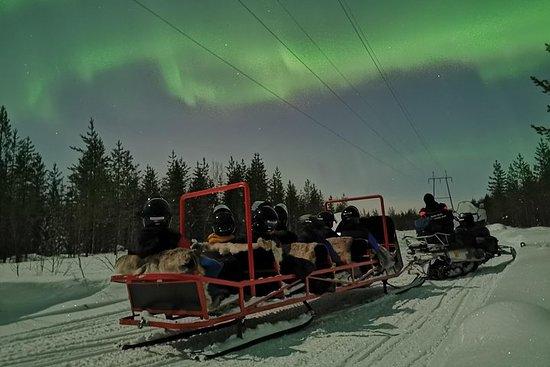 Northern Lights Sledge Ride en...